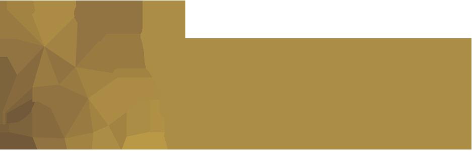 وكالة طروادة العالمية TROY International Agency